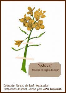 mustard flores ilustradas monica custodio espai sendanatur terapias